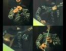【ニコニコ動画】東方地霊殿「廃獄ララバイ」をアイリッシュ楽器等で演奏してみた。を解析してみた
