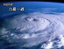 pigstar 台風一過
