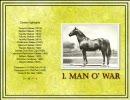 【ニコニコ動画】競馬 20世紀のアメリカ名馬100選 top10を解析してみた