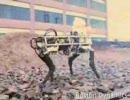 ロボットラバ