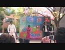 【京大で】 LOVEドッきゅん 【踊ってみた】 thumbnail
