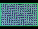 はいはい、錯覚錯覚
