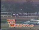 今や伝説!1980年 第82回天皇賞(秋) プリテイキャスト(KBS京都版)