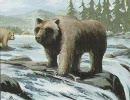 【ニコニコ動画】灰色熊の冒険 第2話を解析してみた