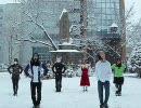【凍死確定】チルノのパーフェクトさんすう教室を踊った【満身創痍】