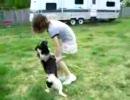幼女vs犬