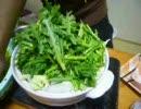 初めてのモツ鍋を作ってみた