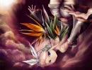 【捨て三毛猫】極楽鳥 -bird of paradise-【歌ってみた】 thumbnail