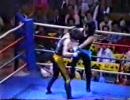 シュートボクシング2
