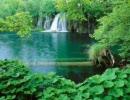 【ニコニコ動画】自然の音~森の中の音~作業用BGM(22分)を解析してみた