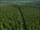 ツール・ド・フランス2007 第5ステージ【182,5 km】シャブリ~オタン その5