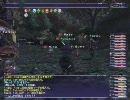 【FF11】忍盾で花鳥風月Step3ゴトージャ挑戦【FFXI】