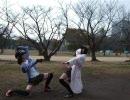 【あかり】公園で体操してきた【+馬琴】
