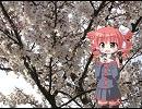 【UTAU】桜の時【重音テト】