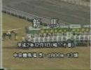 【ニコニコ動画】1990年 新馬戦 トウカイテイオーを解析してみた