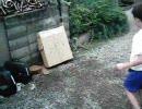 手裏剣練習