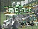 【競馬】2009 第56回 毎日杯 アイアンルック(GC)