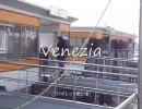 ヴェネチアでARIAの世界を感じてきたよ。ヴァポレット編@卒業旅行