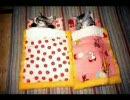 猫 子猫 ペット 居眠り・・zzz