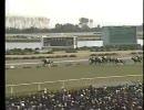 【競馬】[1988年]菊花賞(GI) スーパークリーク【武豊、初GI勝利】