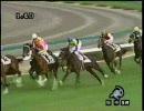 ディープインパクト 新馬戦 レース