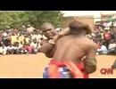 【ニコニコ動画】ダンベ(Dambe) アフリカに生きる古代ボクシングの「生きた化石」を解析してみた