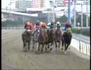 地方競馬 JBCクラシック(2006)