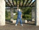 【あうあう】ケロ⑨destinyを踊ってみた【はいはい】 thumbnail