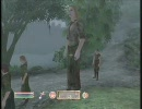 Oblivion ゲーム中に起こった突然のバグ XBOX360日本語版