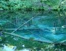 【ニコニコ動画】水面や水中の画像が怖いを解析してみた
