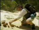 タイムスリップ! 恐竜時代 ① 「巨大なツメの謎」