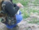 フェレットを使ってウサギ狩りをした