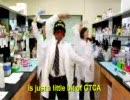 【ニコニコ動画】YMCAに乗せて歌うプライマーの歌「GTCA」を解析してみた