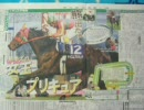 テイエムプリキュアがGⅠレース勝った後の新聞の見出し集【競馬】