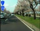 国道7号線(16/17)平川市大坊~藤崎町榊