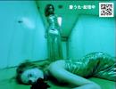 http://tn-skr.smilevideo.jp/smile?i=7454999
