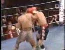 ボクシング ナジーム・ハメド 94~95年ハイライト