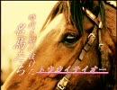 【競馬】時代を駆け抜けた名馬たち[48~52]