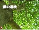 【ニコニコ動画】【オリジナルインスト曲】 森の息吹 【ヒーリング】を解析してみた