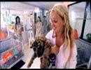 Jennifer Does Thailand-Part 2(c)