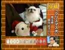 ラッテ、テレビデビューーー!! thumbnail
