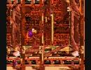 【ニコニコ動画】バグステージを検証してみた【スーパードンキーコング3】