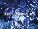 リーフ・アクアリウム2009.07.26 thumbnail