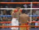 <ボクシング>ウイラポン対西岡利晃 第2戦 (2・2)