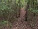 【ニコニコ動画】ゆっくりな友達とMTBで里山トレイルを解析してみた