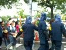 広島の暑い夏が始まったのだ!