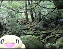 原付日本一周10,000キロ 第34夜【2009/08/07】