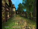 Oblivion プレイ動画 林檎追走記『首狩り斬姫が往く』 第二十二話