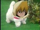 【遊戯王MAD】 愛犬ロボ『城之内君』 【日本直販】