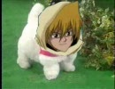 【遊戯王MAD】 愛犬ロボ『城之内君』 【日本直販】 thumbnail